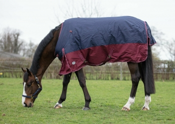 JHL Jumpers Horse Line Heavyweight Combo Turnout Rug